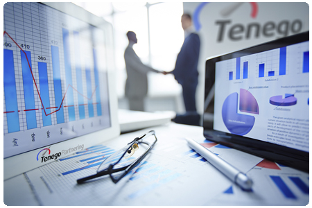 Partner Market Analysis - Tenego Partnering